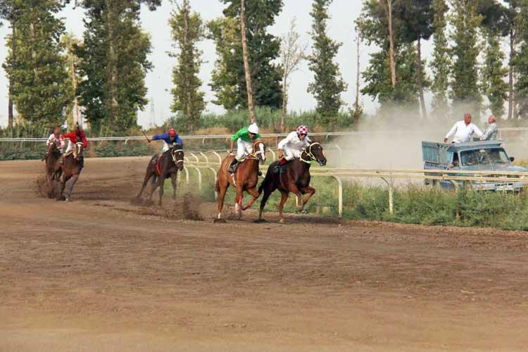 ماجرای رقابت ستاره والیبال و فوتبال کشور در مسابقات اسب سواری