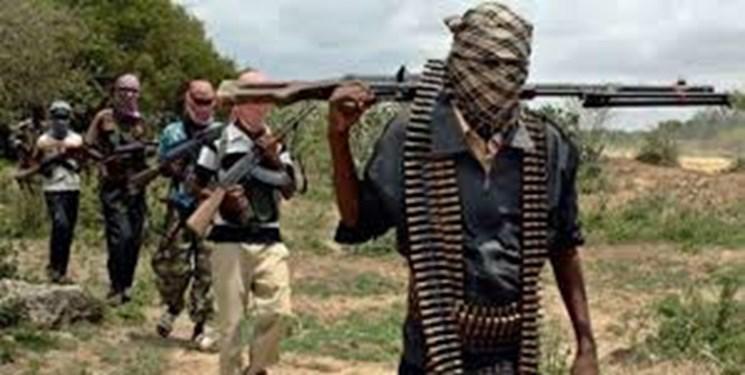 کشته شدن 120 تروریست در عملیات نظامی در نیجر